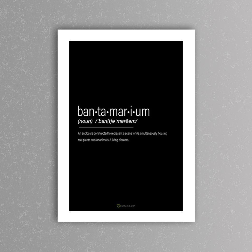 Bantamarium Definition Art Print | Black
