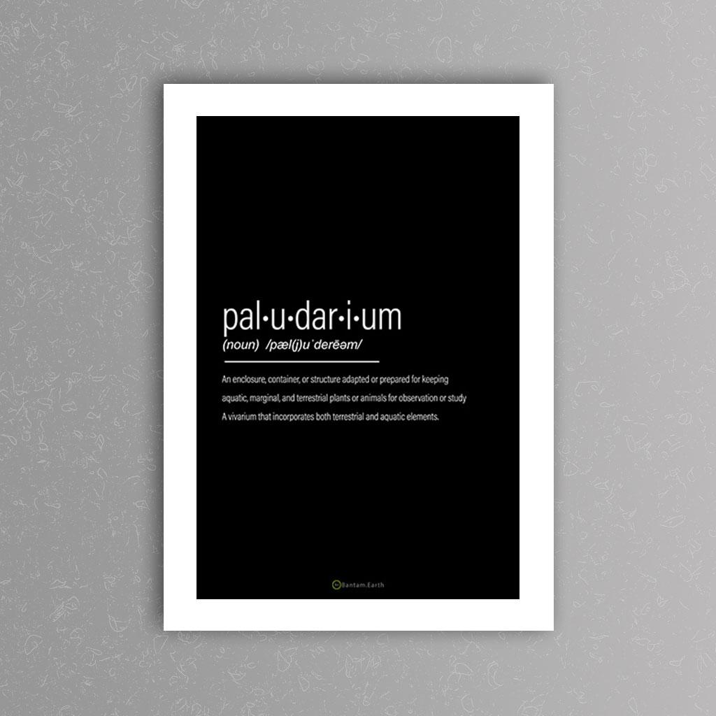 Paludarium Definition Art Print | Black